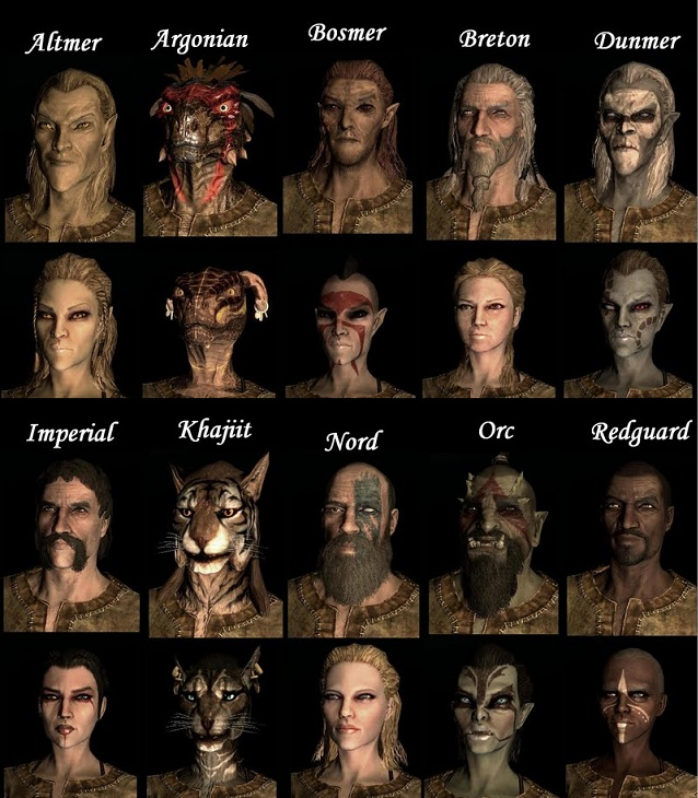 races and Skyrim offers a veritable smorgasbord of playable races to